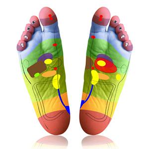 Différentes zones du pied en réflexologie plantaire